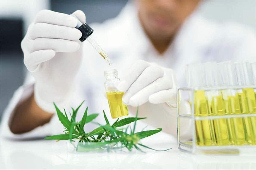 Výskum CBG je sľubný podobne ako v prípade CBD oleja.